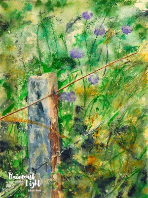 Thumbnail of a watercolour painting of a barbed wire fence and post