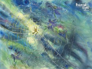 Spider Web in the Garden by Heather Himmel