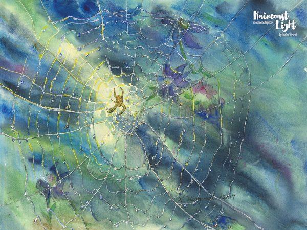 Spider Web in the Garden by Heather Himmel