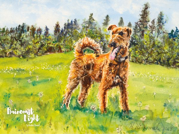 Watercolour painting of an Irish Terrier